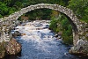-scotland_carrbridge.jpg