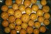 -marmalade-oranges2.jpg
