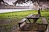 -picnic-bench.jpg