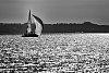 -sailingonthewateroflight.jpg