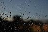 -rain_1418.jpg