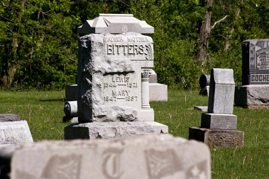 Name:  Cemetery20100509_0075.jpg Views: 216 Size:  113.1 KB