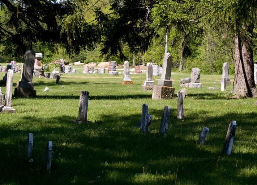 Name:  Cemetery20100509_0073.jpg Views: 233 Size:  116.4 KB