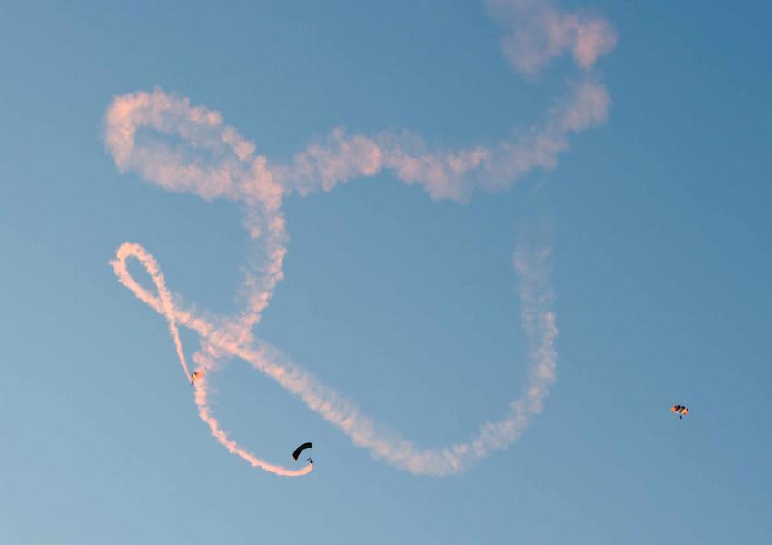 Name:  Skydivers20100529_0074.jpg Views: 2788 Size:  20.8 KB