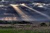 -horicon-rays.jpg