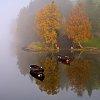 -autumn-scene.jpg