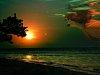 -watching-sunset.jpg