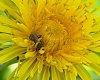 -2012-sping-march-2-015b.jpg