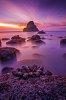 -900px-sunset-clams.jpg