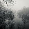-afternoon_fog.jpg