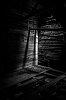 -rat_of_light-1753.jpg
