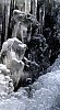 -frozen-waterfall-9.jpg