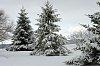 -winter-2014-15-008_edited-1-1024x680-.jpg