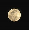 -luna.jpg