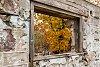 -caledon-fall-17.jpg