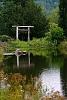 -arbor-pond-1.jpg