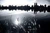 NYC Skyline Reflections