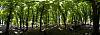 Kalemegdan Park Panorama