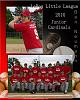 Baseball Picture Layout