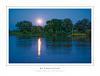 Nocturnal Riverside