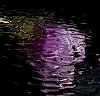 Neon Reflections on Night Water