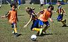 Actionmen - U8 Soccer