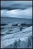 infrared landscapes