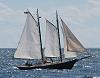 more from the schooner regatta