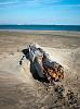 Une plage encombrée