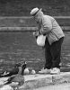 feed the birds... tuppence