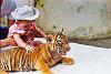 Baby Human and Baby Tiger