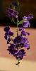 A Drop of Purple