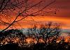 Simple Texas Sunset