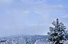 """Sedona """"Snowdona"""" Blizzard"""