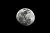 Obligatory Moon Photo