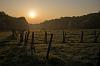Alsatian dawn