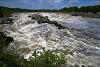 Great Falls of the Potomac in Flood