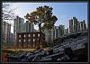 Derelict Shanghai
