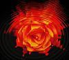 Flame Swirl
