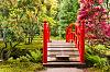 Japanese Garden, Clingendael, The Hague