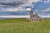 Cape Cod Grasses