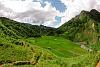 Rice field valley