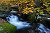 Some Autumnal Streams
