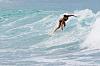 Christmas Surfing at Ehukai Beach Park, Hawaii