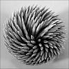Toothpick swirl