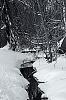 icy streams...