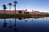 Borrego Springs Resort Golf Course