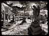 Some new IR 8mm cemetery images