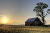 Old Barn (near) sunset