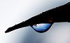Blue Skies in a Rain Drop